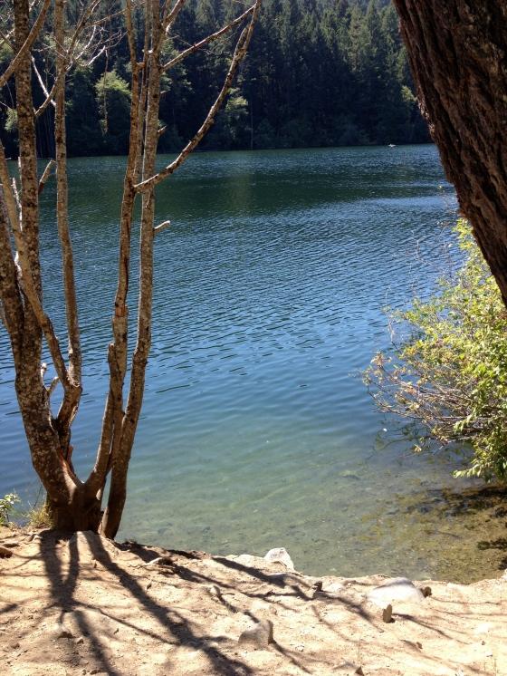 A swim in the lake